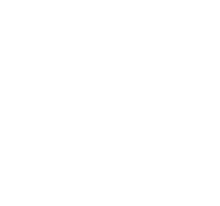 Plum Bowl Freebound Trampoline